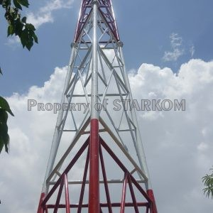 mini sst kaki 3 semiknock erection (53) copy